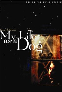 My Life as a Dog (1985) DVD Release Date