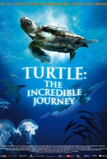 Turtle: The Incredible Journey (2009) DVD Release Date