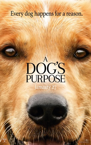 A Dog's Purpose (2017) DVD Release Date