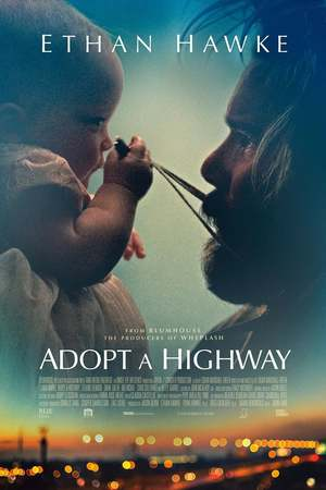 Adopt a Highway (2019) DVD Release Date