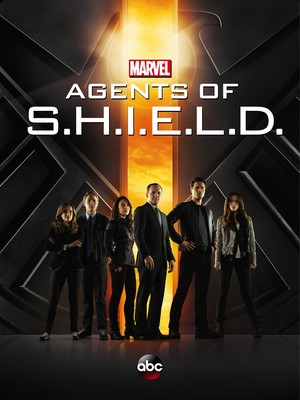 Agents of S.H.I.E.L.D. (TV Series 2013- ) DVD Release Date