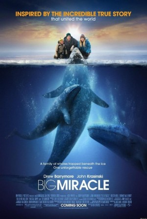 Big Miracle (2012) DVD Release Date