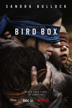 Bird Box (2018) DVD Release Date