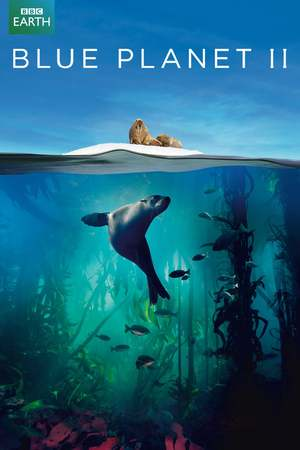 Blue Planet II (TV Mini-Series 2017) DVD Release Date