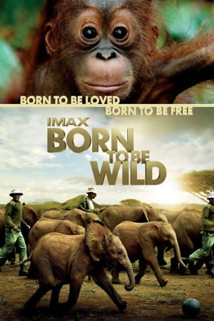 Born to Be Wild (2011) DVD Release Date