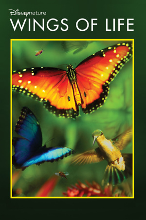 Disneynature: Wings of Life (2011) DVD Release Date