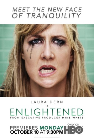 Enlightened (TV 2011-) DVD Release Date