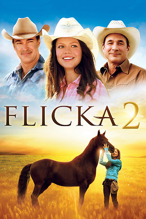 Flicka 2 (Video 2010) DVD Release Date