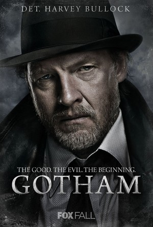 Gotham (TV Series 2014- ) DVD Release Date