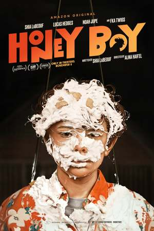 Honey Boy (2019) DVD Release Date