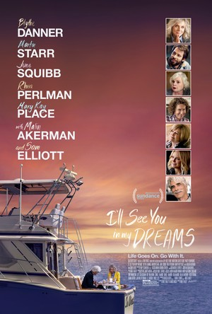 I'll See You in My Dreams (2015) DVD Release Date