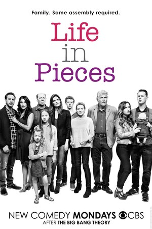 Life in Pieces (TV Series 2015- ) DVD Release Date