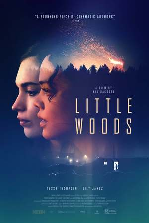 Little Woods (2018) DVD Release Date