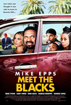 Meet the Blacks (2016) DVD Release Date