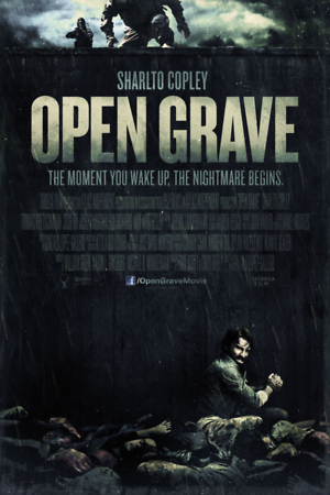 Open Grave (2013) DVD Release Date