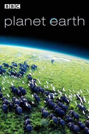 Planet Earth (TV Series 2006) DVD Release Date