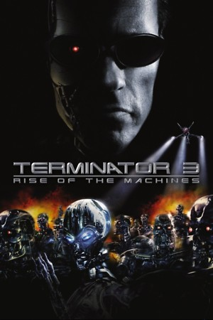 Terminator 3: Rise of the Machines (2003) DVD Release Date