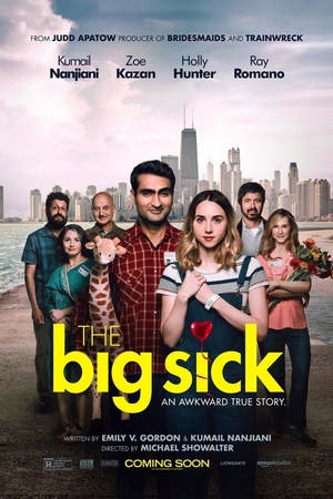 The Big Sick (2017) DVD Release Date