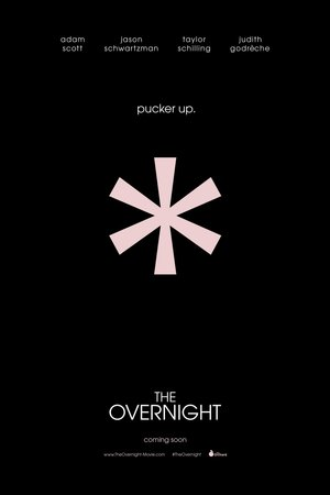 The Overnight (2015) DVD Release Date