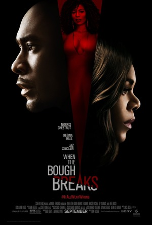 When the Bough Breaks (2016) DVD Release Date