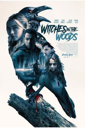 Witches in the Woods (2019) DVD Release Date