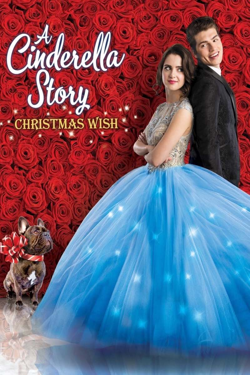 A Cinderella Story: Christmas Wish DVD Release Date ...