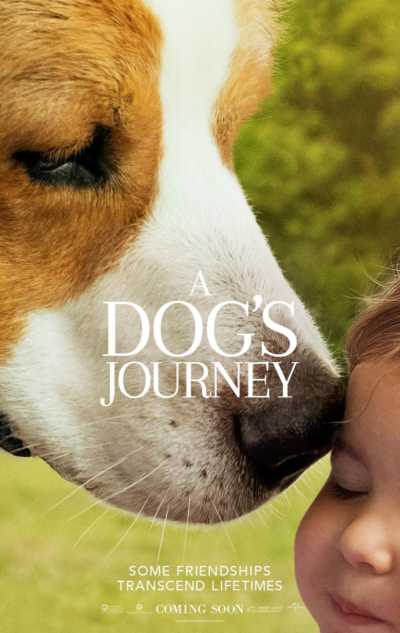 A Dog's Journey DVD Release Date August 20, 2019