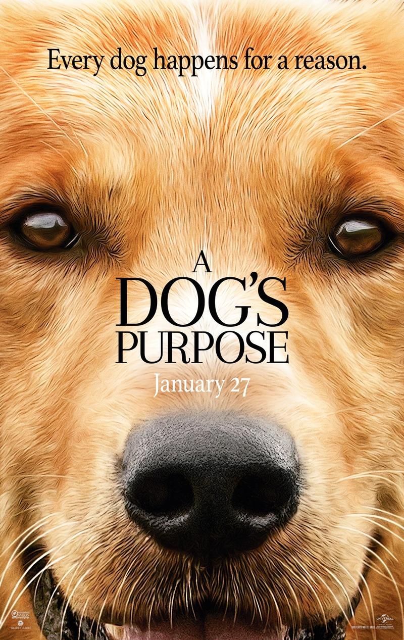 A Dog S Purpose Imdb