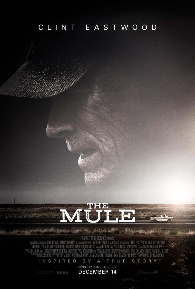 the mule download release date