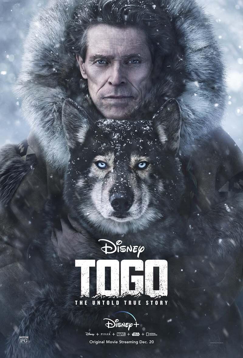 Image result for togo dvd date