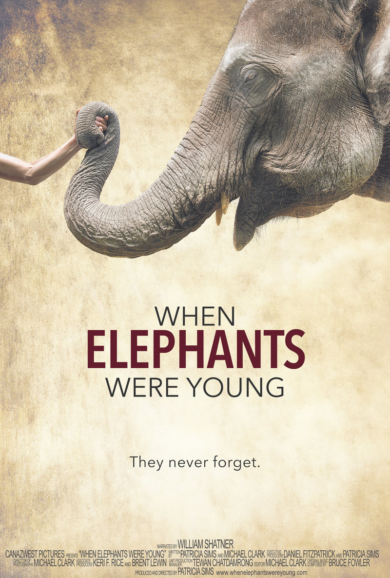 When Elephants Were Young DVD Release Date January 17, 2017
